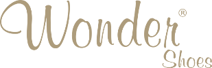 logo-wondershoes-gold-310x100